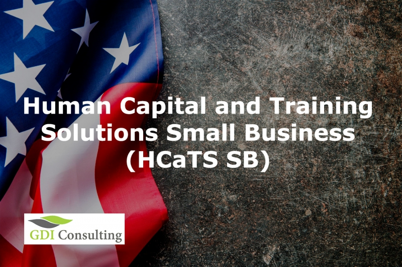 Human Capital and Training Solutions Small Business (HCaTS SB)
