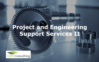 Project and Engineering Support Services II